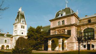 Castelul-Macea