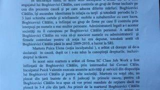 boghicevici1-18