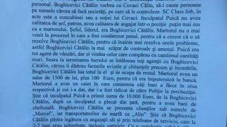 boghicevici1-19