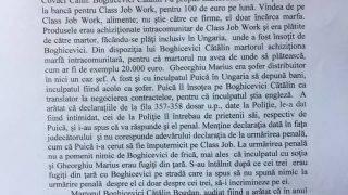 boghicevici1-28