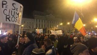 protest1feb-5
