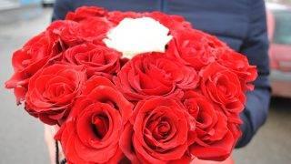 siposi-flori-5