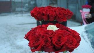siposi-flori-9
