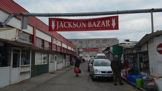 jackson_arad-14