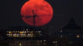 super-luna-rosie-