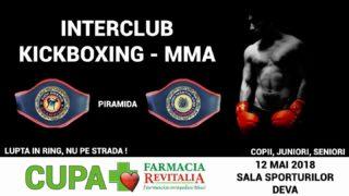 kickboxing_Deva-2
