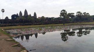 cambogia-7