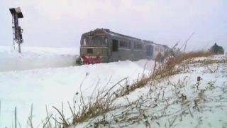 tren-inzapezit