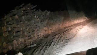 lemne-1