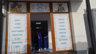 clinica_veterinara_arad-2