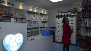 clinica_veterinara_arad-4