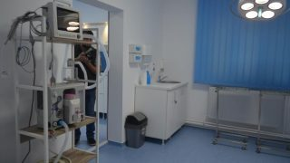 clinica_veterinara_arad-5