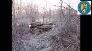 hoti-lemne-2