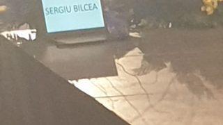 Bilcea-2