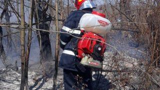 pompieri_arad-9