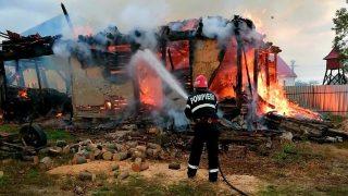 IncendiuBruznic1