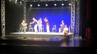 teatru-musical1