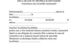 DECLARATIE1