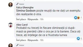 delir_falca3