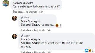 delir_falca4