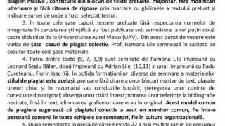plagiat-lile1
