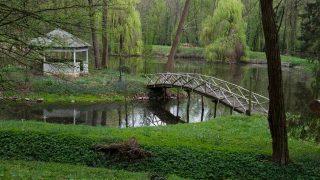 Parcul-lacul-_ANG2779-1